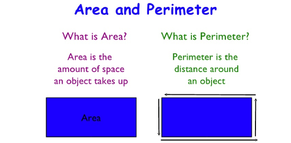 6th Grade Area & Perimeter Quiz