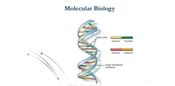 Hardest Molecular Biology Exam: Quiz