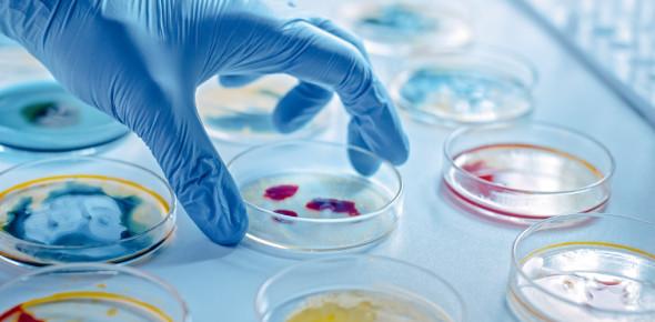 Microbiology Toughest Exam: Quiz!