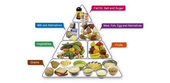 The Food Pyramid Quiz! Trivia