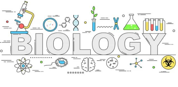 Do You Know Year 7 Biology? - ProProfs Quiz