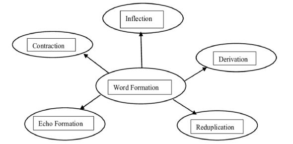 Word Formation Exam: Quiz!