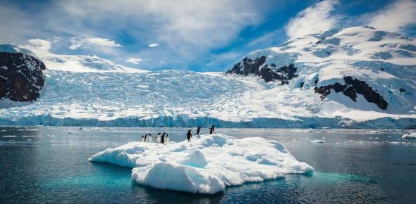 The Antarctica: True Or False Quiz! Trivia