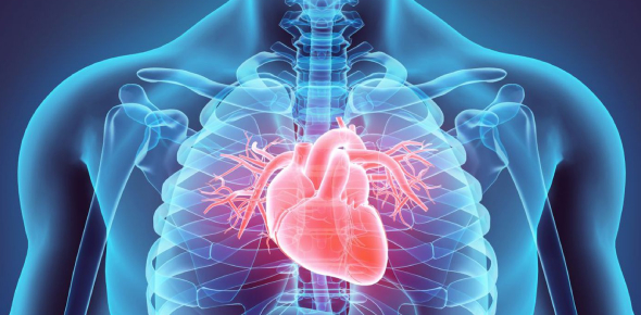 Cardiology Practice Exam Quiz!