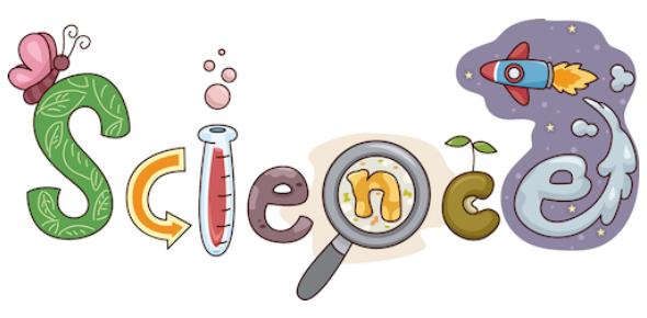 6th Grade Science Knowledge Quiz