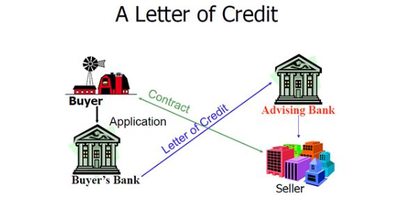 Letter Of Credit Basic