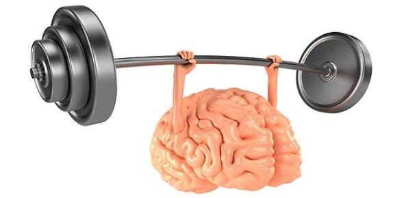 Informative Quiz On Brain Refreshment