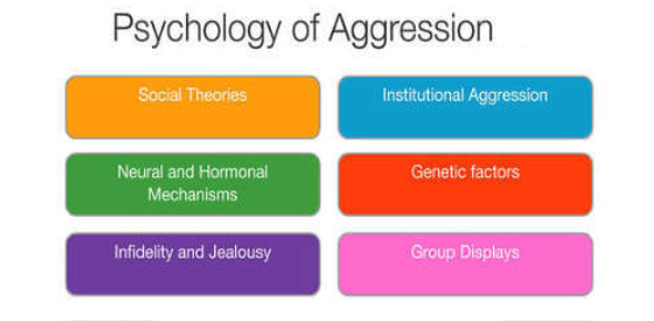 Quiz On Psychology And Aggression