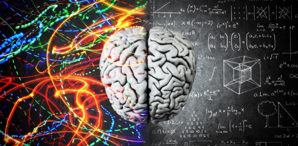 Ultimate Knowledge Trivia On Neuro! Quiz
