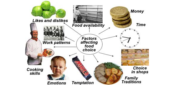 Factors Affecting Food Selection