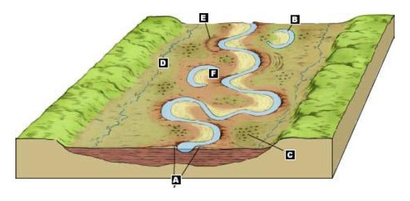River Features: Trivia Facts Quiz!