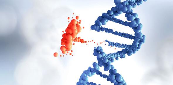 Genetic Diseases Quiz