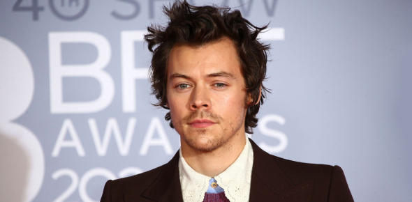 Is Harry Styles Perfect For You?
