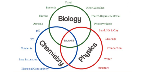 Science Quiz: Biology, Chemistry, And Physics
