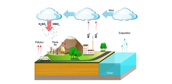 A Review Quiz On Acid Rain: Trivia!