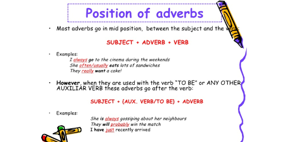 Position Of The Frequency Adverbs