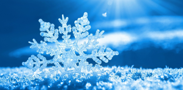 What Do You Know About Snowflake?