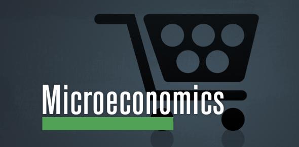 Quiz: Microeconomics True/False Questions