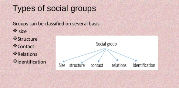Types Of Social Groups Quiz! Trivia