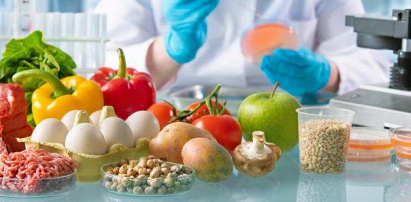 Food Safety Quiz: ServSafe Diagnostic Test