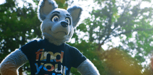 Quiz: Are You A Furry?