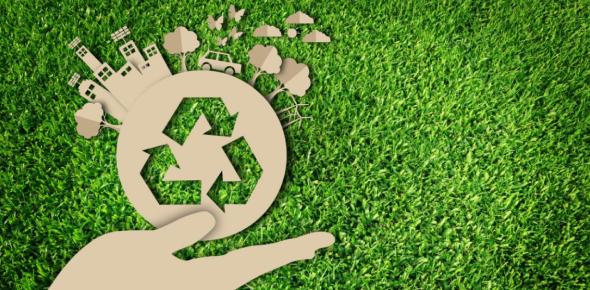 Sustainability Quiz On Biodiversity! Trivia