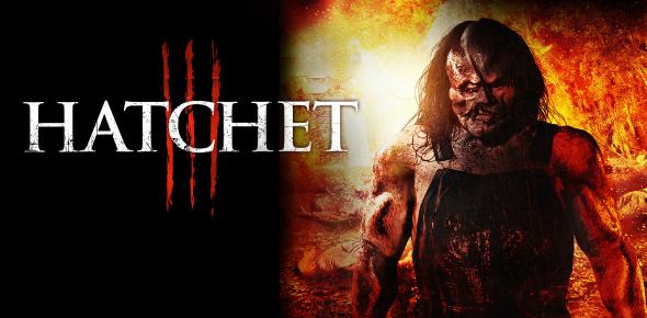 Hatchet Quiz Chapters 5 & 6
