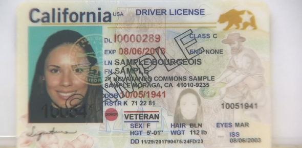 California Special Drivers Certification Quiz!