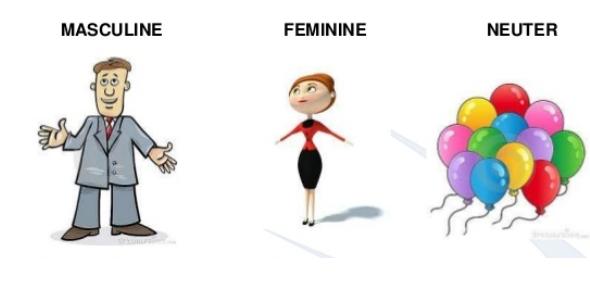 Grammar Test - Know Your Gender Nouns!