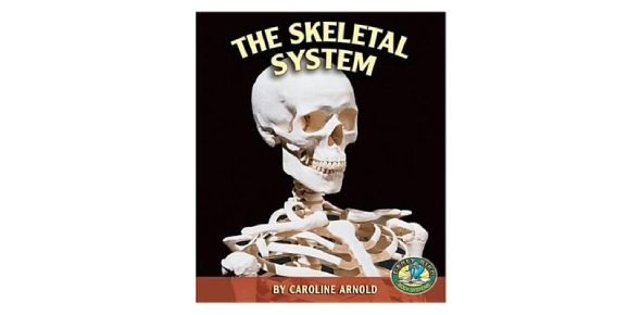 The Skeletal System Book: MCQ Quiz