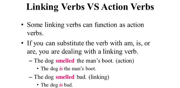 Linking And Action Verbs! Grammar Trivia Quiz