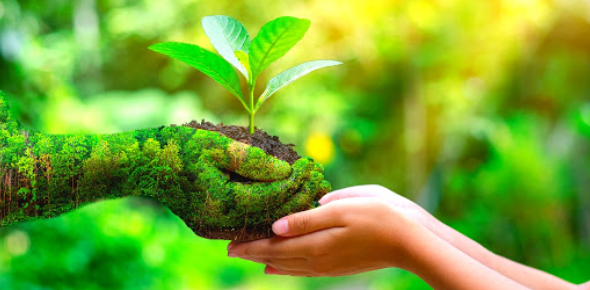How Eco-friendly Are You?