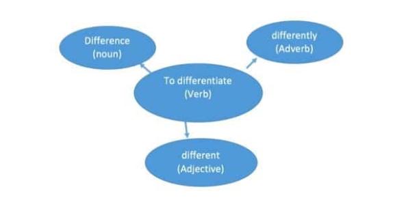 Use Of English: Grammar Quiz! Test