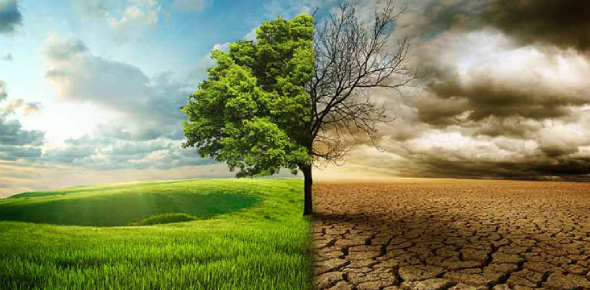 Test How Much You Can Score In Climate Quiz Questions!