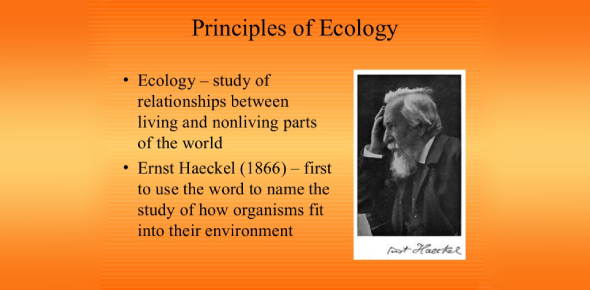 Ecology Principles Trivia Quiz: How Much You Know?