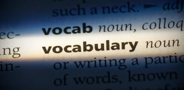 Primary 3 Online Vocabulary Quiz 1