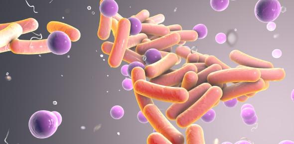 Microbiology Trivia Quiz On Microorganisms!