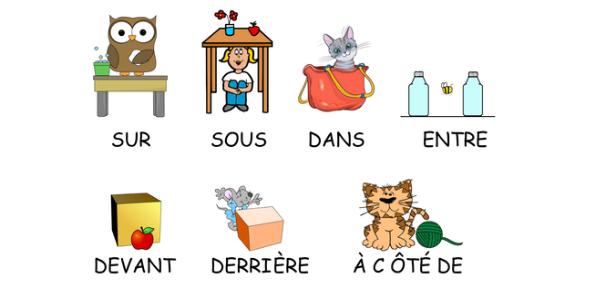 Basic Prepositions Knowledge Quiz! Trivia
