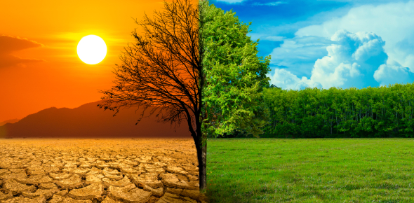 Weather And Climate Quiz Questions: Trivia!