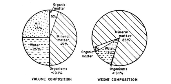 A Quiz On Soil Properties! Trivia