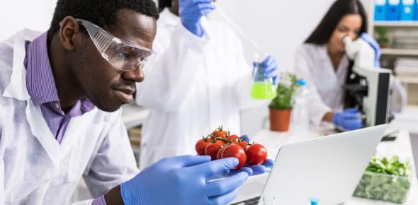 Trivia: Food Science Quiz Questions!