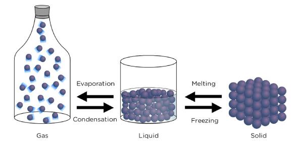 Nature Of Matter Unit Test