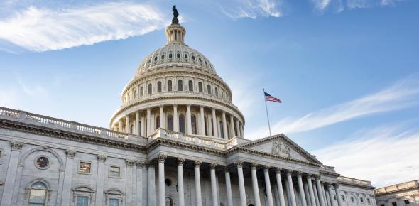 American Government! MCQ Test: Quiz