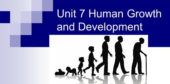 Exam: Human Growth And Development! Quiz