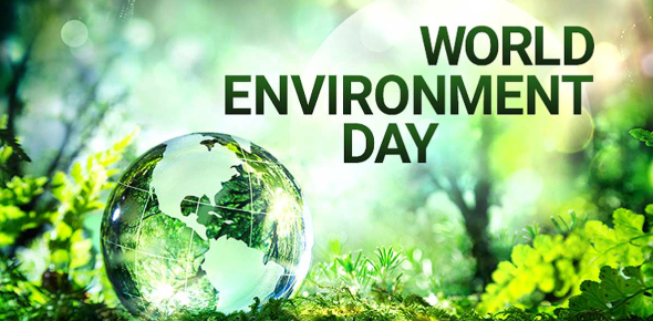 The World Environment Day Quiz! Trivia Facts