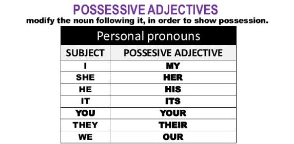 Possessive Adjective MCQ Test: Trivia Quiz