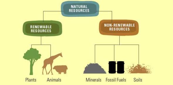 The Natural Resources MCQ Quiz: Trivia