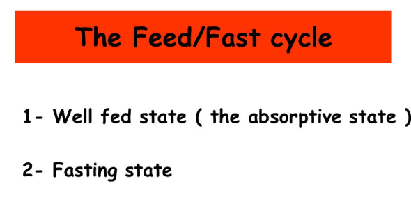 The Feed-fast Cycle Quiz! Trivia