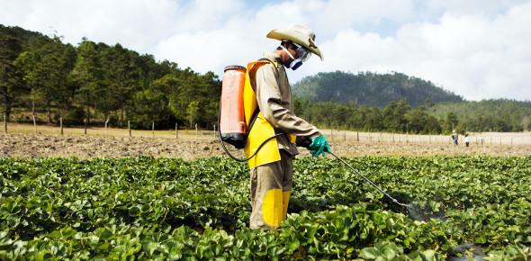 Pesticide Applicator Certification Practice - C3