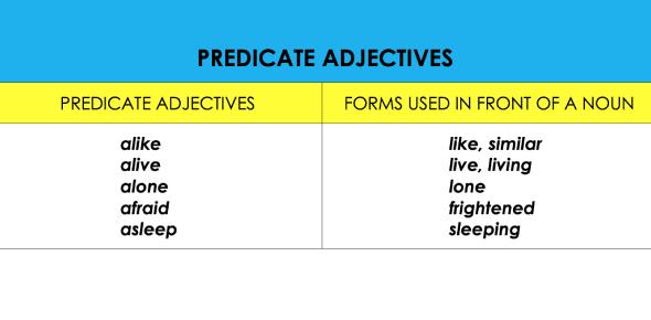 Predicate Adjectives Test Quiz: Trivia!